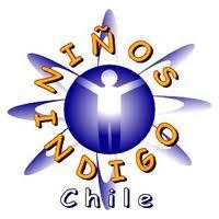 Web Oficial www.ninosindigochile.cl/