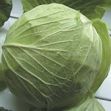 Fresh_Cabbage - Health benefits of eating cabbage - Sports and Fitness