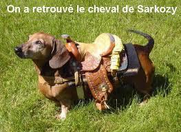 Mise à mort de la médecine du travail Cheval_de_Sarkozy