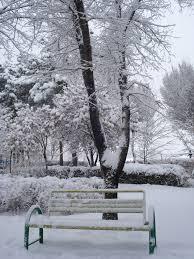 عکس نیمکت در زمستان
