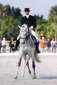 Virginia Dressage Association