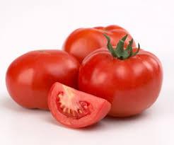 [Image: tomat-1.jpg]