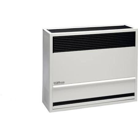 Williams 3003622 Direct-Vent Gas Furnace