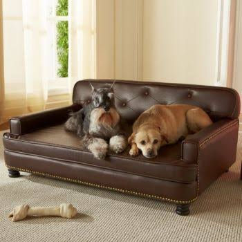 Enchanted Home Pet Library Pet Sofa in