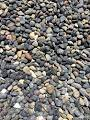 Garden Bloom Authentic Mexican Beach Pebbles 1 4 inch Perfect for ...