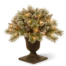 Christmas Tree Farms Near Lincoln Nebraska by Find All Types Of Christmas Trees At The Home Depot