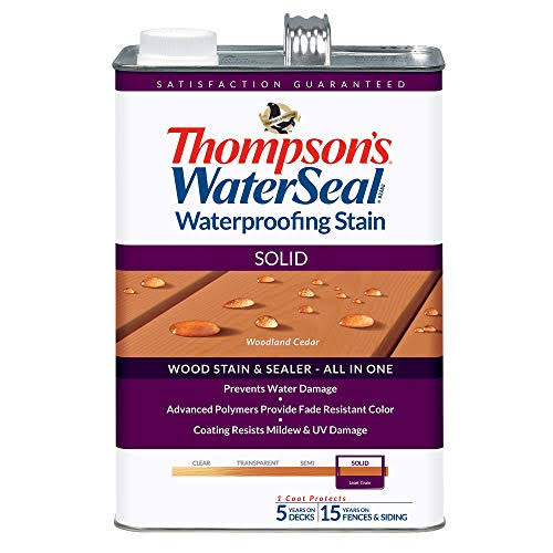 Thompson's WaterSeal Waterproofing Sealer - Solid, 1gal