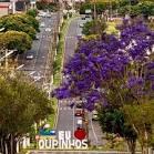 imagem de Ourinhos São Paulo n-8