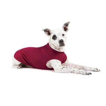 Gold Paw Fleece Dog Jacket - Garnet - Size 22