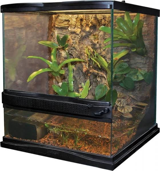 Zoo Med Laboratories Naturalistic Terrarium - Small