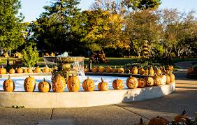 Milford Pumpkin Fest Schedule by Events In Illinois