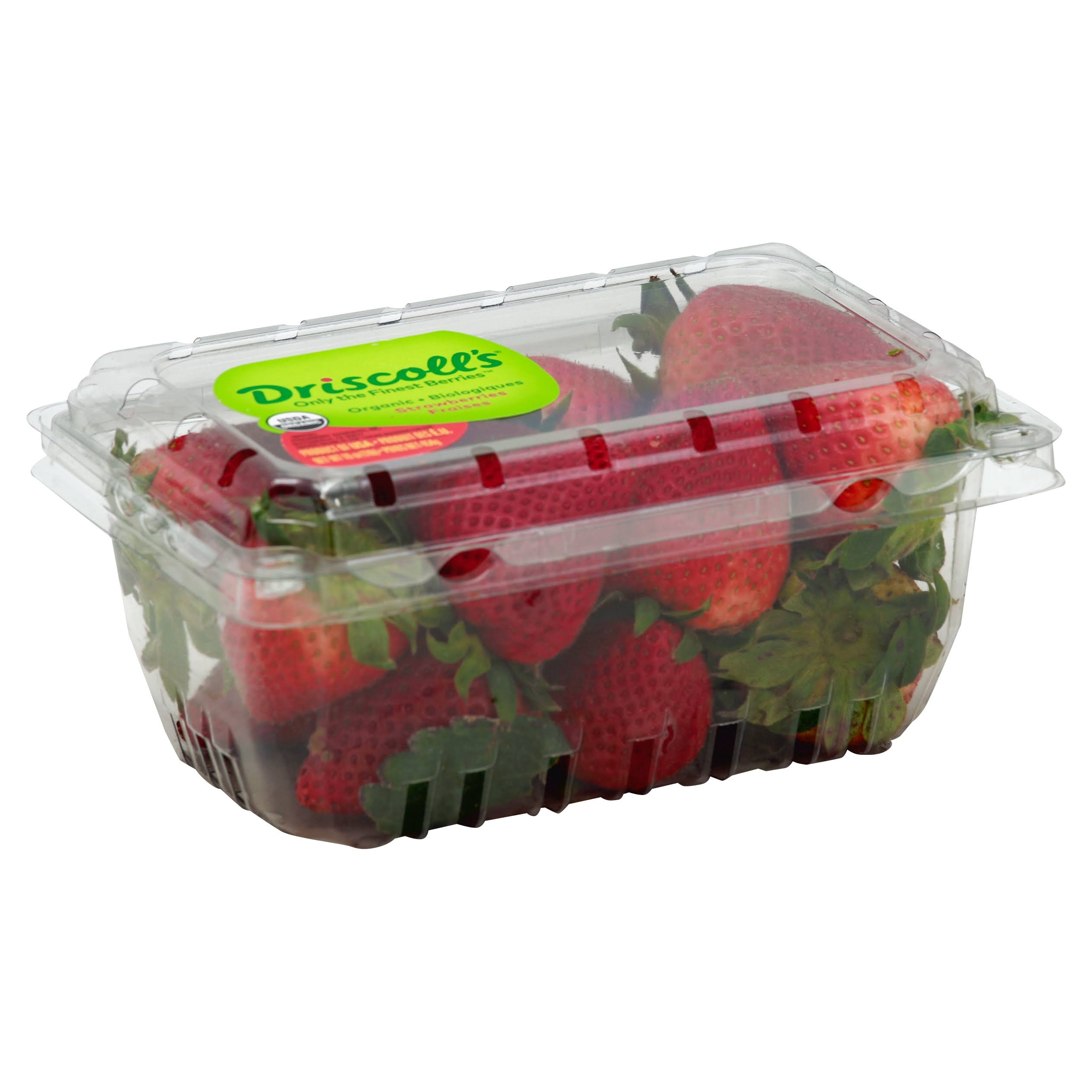Driscolls Strawberries, Organic - 16 oz