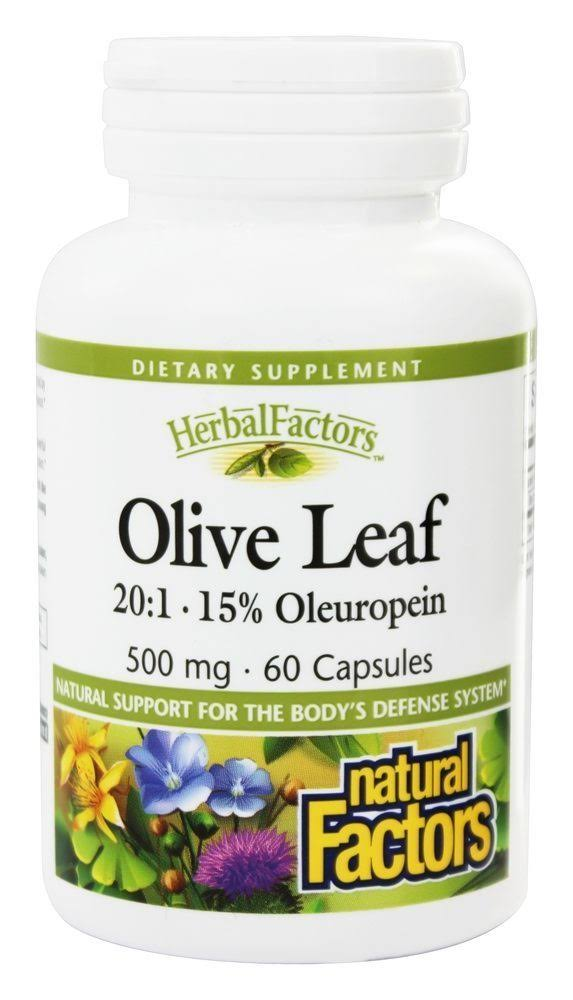 Natural Factors Olive Leaf Extract Supplement - 500mg, 60 Capsules