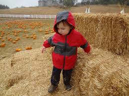 Pumpkin Patch North Bend Oregon by Field Trips With Mr Skinks