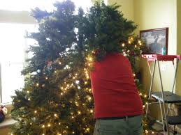 7ft Black Pencil Christmas Tree by Interior 10 Foot Artificial Tree 12 Ft Christmas Tree Black