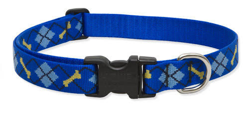 Lupine Dapper Dog Adjustable Dog Collar