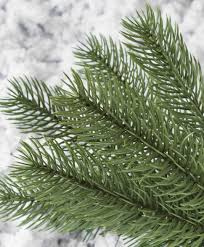 Lifelike Artificial Christmas Trees Canada by Classic Noble Fir Christmas Tree Tree Classics