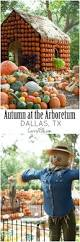 Free Pumpkin Patch Houston Tx by 100 Best Images About Explore Texas On Pinterest Free Things To