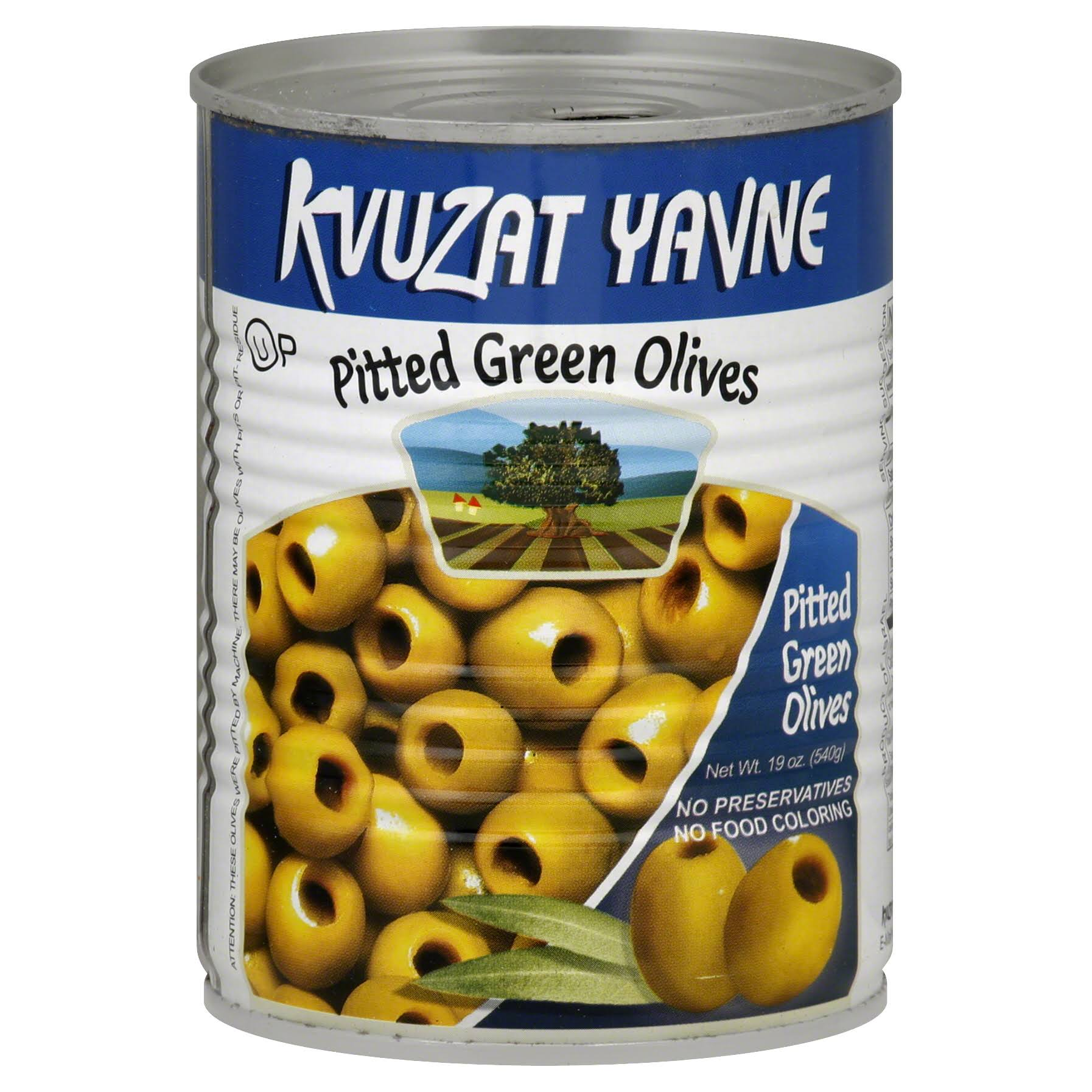 Kvuzat Yavne Pitted Green Olives - 19oz