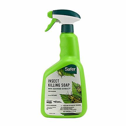 Safer Insect Killing Soap - 32 Oz