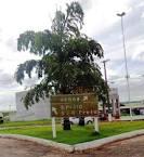imagem de Uchoa São Paulo n-12