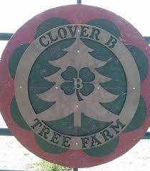 Christmas Tree Farms Near Lincoln Nebraska by Clover B Tree Farm Home Facebook