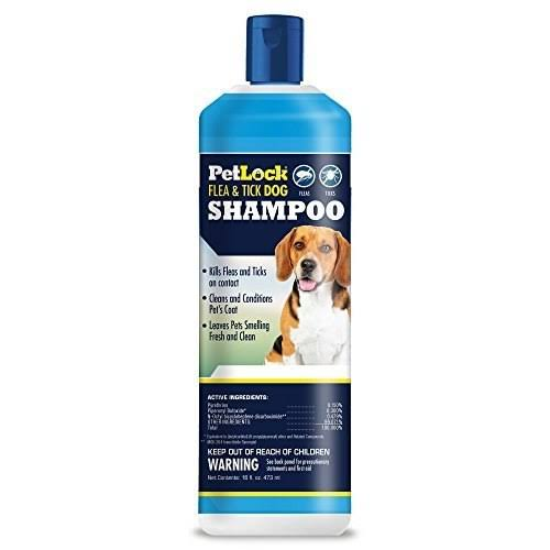 PetLock Flea and Tick Dog Shampoo - 16oz