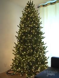 Balsam Christmas Tree Australia by O Christmas Tree U2014 Bright Side Jessica
