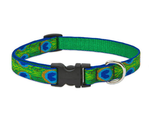 Lupine Tail Feathers Adjustable Dog Collar - 3/4in