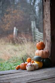 Pumpkin Patch North Bend Oregon by 1604 Best Autumn And Fall Images On Pinterest Autumn Fall Fall