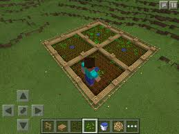 Minecraft Grow Pumpkins Fast by How To Grow Wheat Carrots Or Potatoes In Minecraft Pe U2013 Phoneresolve