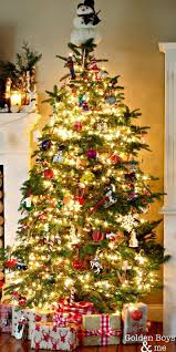 Christmas Tree Species Name by 7 Best Noble Fir Christmas Trees Images On Pinterest Firs