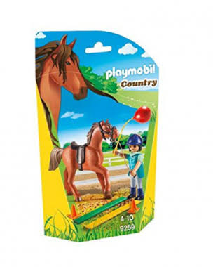 Playmobil Horse Therapist Figure Set - Country