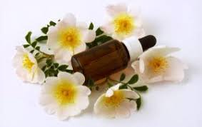Flower Essences – Vital Part of Herbal Therapy?