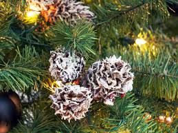 Pine Cone Christmas Trees For Sale by 11 Youtube Videos To Watch For Christmas Decor Ideas Hgtv U0027s