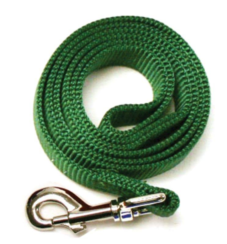 Leather Brothers Nylon Dog Leash 6ft x 5/8in Green