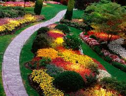 Flowers For Flower Beds by Garden Ideas Awesome Container Garden Ideas Container