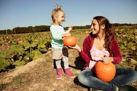 Pas Pumpkin Patch 2017 by Pumpkin Patches In Maryland And Northern Virginia 2017