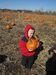 Pumpkin Patch Albany Ny by Family Friendly Outdoor Activities In Omaha Military Town Advisor