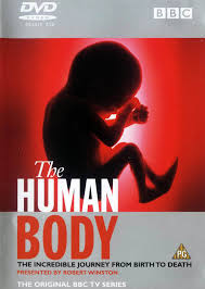 Inside the Human Body -Inside the Human Body