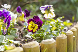 Flowers For Flower Beds by 10 Edging Ideas For Flower Beds Gardens And Landscaping Angie U0027s
