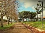 imagem de Alegria Rio Grande do Sul n-8