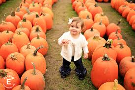 Pumpkin Patch Albany Ny by Fall Kid Photos Ideas Kids With Pumpkins Children Photography