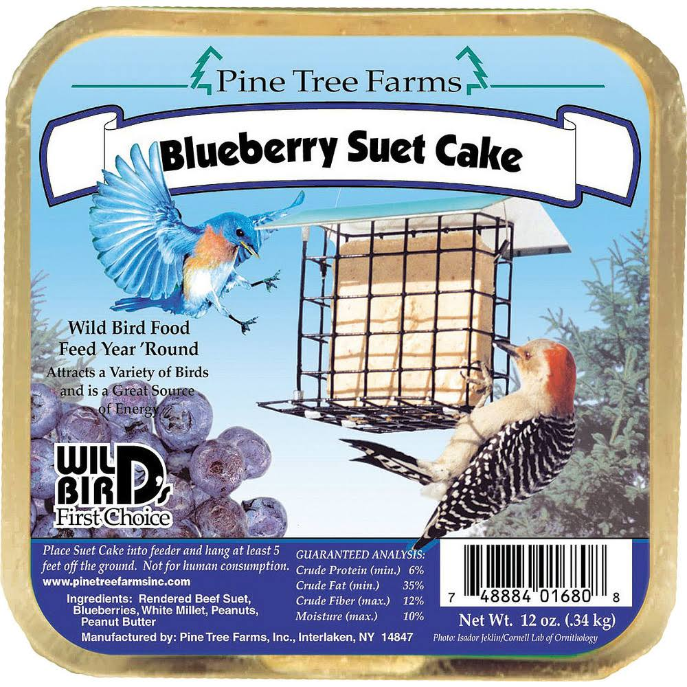 Pine Tree Farms 01680 Blueberry Suet Cake Bird Food - 12oz