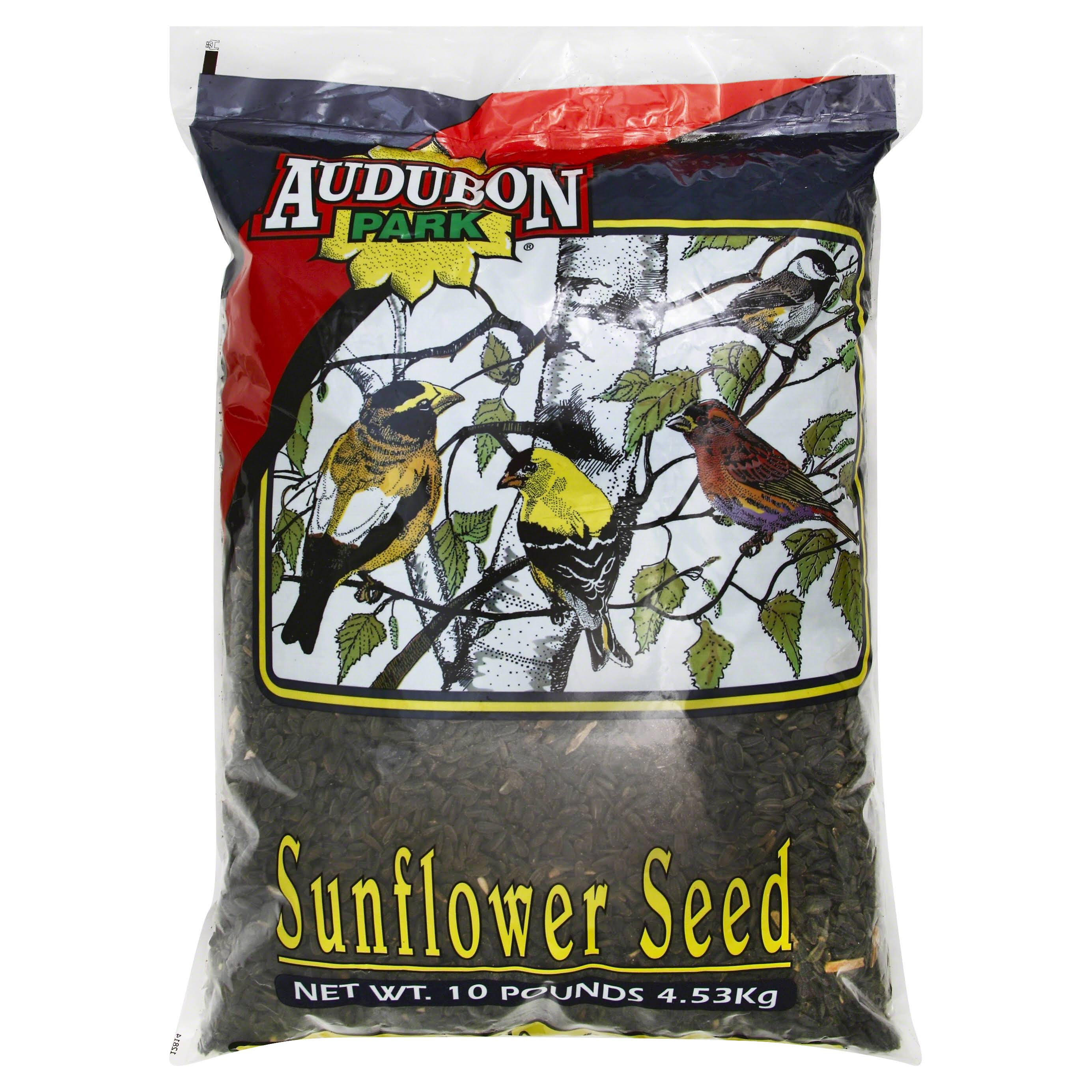 Audubon Park 12261 Black Oil Sunflower Seed Wild Bird Food - 10lbs