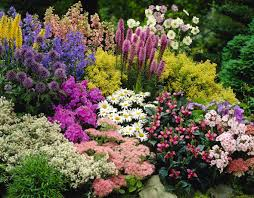 Flowers For Flower Beds by Inexpensive Landscaping Ideas To Beautify Your Yard Freshome Com