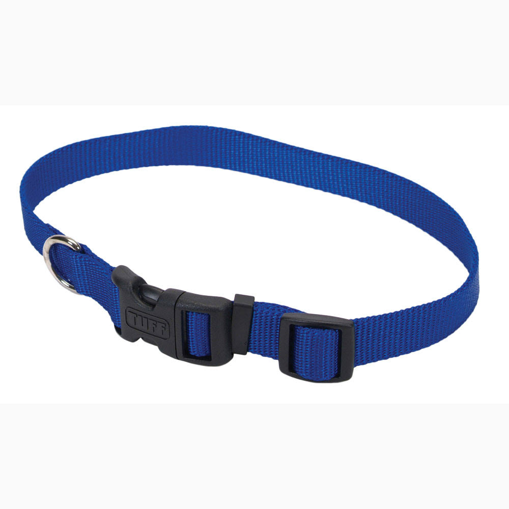 Aspen Pet Nylon Adjustable Dog Collar - Small, Blue