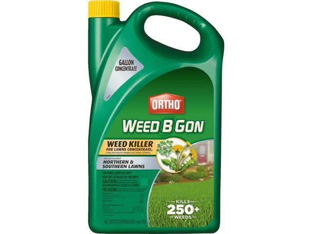 Ortho Weed B Gon Lawn Weed Killer - 1 Gallon