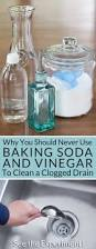 Bathtub Drain Trap Frozen by Why You Should Never Use Baking Soda And Vinegar To Clean Clogged