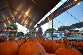 Pumpkin Patch Bonita Springs Fl by Samantha Rose Says November 2015